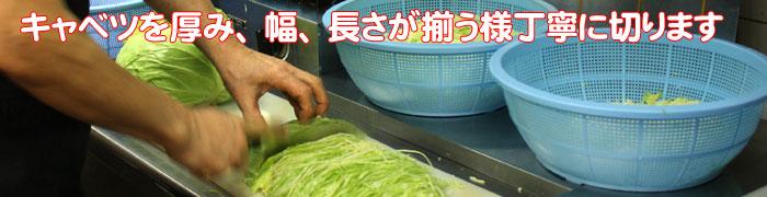 キャベツの切り方-5