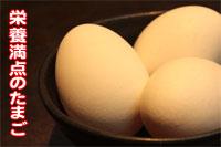 新鮮国産卵