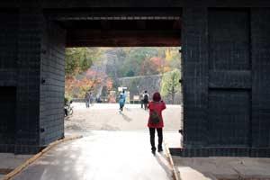大阪城公園-5