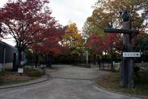 鶴見緑地内のキャンプ場