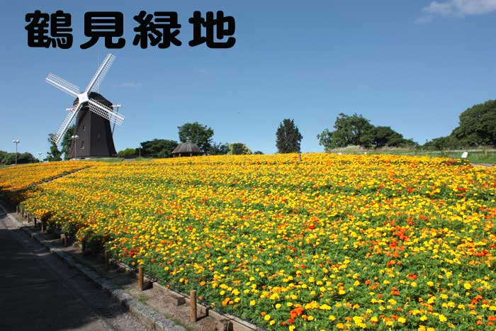 大阪市鶴見緑地の風車